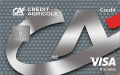 CA Visa business credit